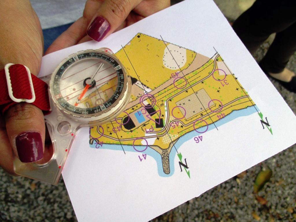 orienteering-brazil